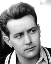 This is an image of 193229 Martin Sheen Photograph & Poster