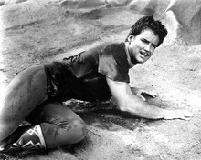 This is an image of 193462 Steve Reeves Photograph & Poster