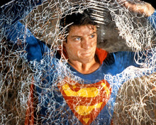 This is an image of 283195 Superman Photograph & Poster