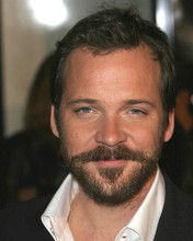 This is an image of 270516 Peter Sarsgaard Photograph & Poster