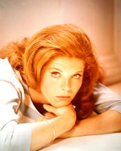 This is an image of 231006 Samantha Eggar Photograph & Poster