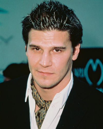 This is an image of 239126 David Boreanaz Photograph & Poster