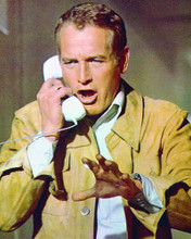 This is an image of 233021 Paul Newman Photograph & Poster