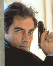 This is an image of 269050 Timothy Dalton Photograph & Poster