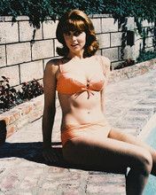 This is an image of 212775 Tina Louise Photograph & Poster