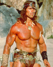 This is an image of 220726 Arnold Schwarzenegger Photograph & Poster