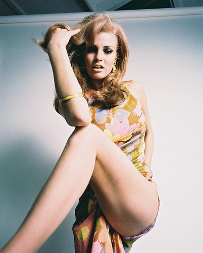 This is an image of 233496 Raquel Welch Photograph & Poster