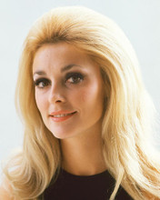 This is an image of 229949 Sharon Tate Photograph & Poster