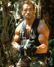 This is an image of 284013 Predator Photograph & Poster