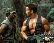 This is an image of 284014 Predator Photograph & Poster