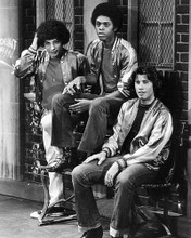 This is an image of 194153 Welcome Back Kotter Photograph & Poster