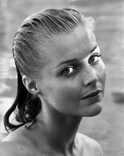 This is an image of 190695 Carol Lynley Photograph & Poster