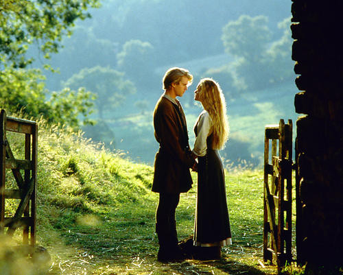 This is an image of 267591 The Princess Bride Photograph & Poster