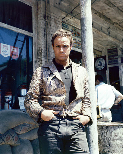 This is an image of 271442 Marlon Brando Photograph & Poster