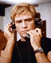 This is an image of 271446 Marlon Brando Photograph & Poster