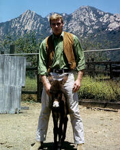 This is an image of 282819 Lee Majors Photograph & Poster