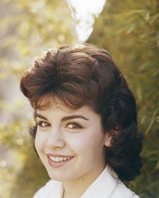 This is an image of Prints & Posters of Annette Funicello 202542