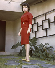 This is an image of Prints & Posters of Annette Funicello 202563