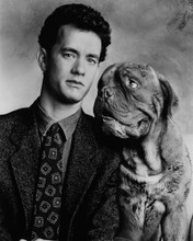 This is an image of Prints & Posters of Tom Hanks 104592