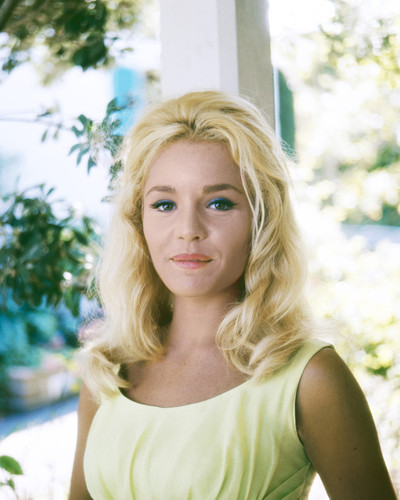 Tuesday Weld measurement