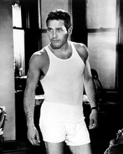 This is an image of Prints & Posters of Paul Newman 104698