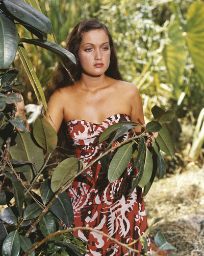 This is an image of Prints & Posters of Dorothy Lamour 202514