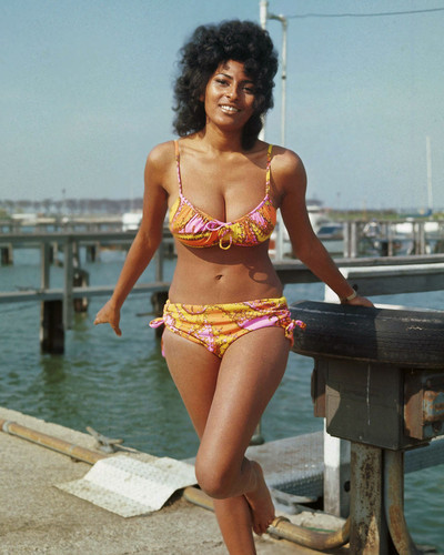 This is an image of Prints & Posters of Pam Grier 202540
