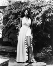 This is an image of Prints & Posters of Pam Grier 104860