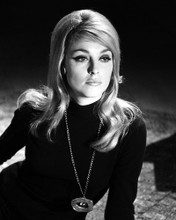This is an image of Prints & Posters of Sharon Tate 104862