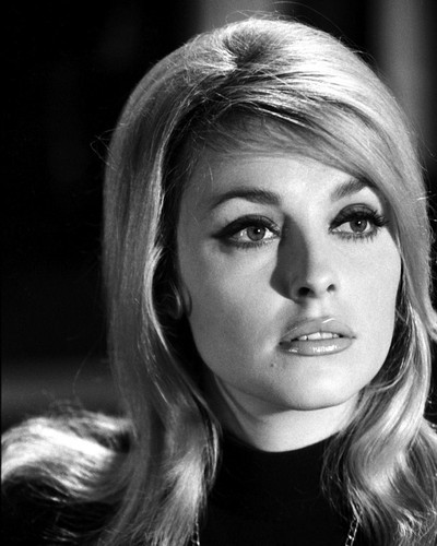 This is an image of Prints & Posters of Sharon Tate 104872