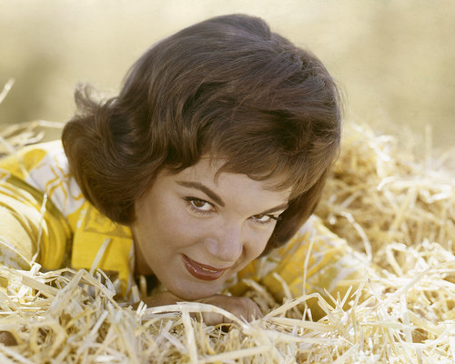 This is an image of Prints & Posters of Connie Francis 202825