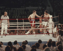 This is an image of Prints & Posters of Muhammad Ali and George Foreman 202892