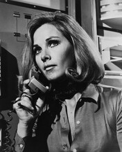 This is an image of Prints & Posters of Wanda Ventham 105397