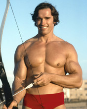 This is an image of Prints & Posters of Arnold Schwarzenegger 202898