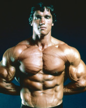 This is an image of Prints & Posters of Arnold Schwarzenegger 202899