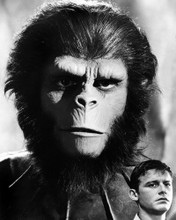 This is an image of Prints & Posters of Planet of the Apes (tv) 105508
