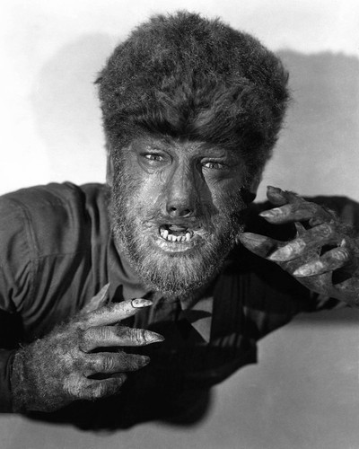 This is an image of Prints & Posters of The Wolfman 105372