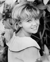 This is an image of Prints & Posters of Hayley Mills 105293