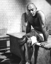 This is an image of Prints & Posters of Yul Brynner 105079
