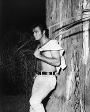 This is an image of Prints & Posters of Burt Reynolds 105144
