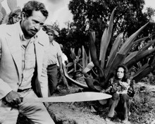 This is an image of Prints & Posters of Bring Me the Head of Alfredo Garcia 104938