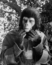 This is an image of Prints & Posters of Planet of the Apes (tv) 105605