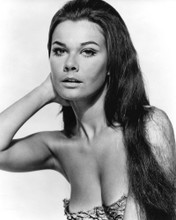 This is an image of Prints & Posters of Imogen Hassall 105892