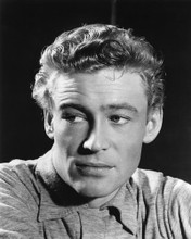 This is an image of Prints & Posters of Peter O'Toole 105771