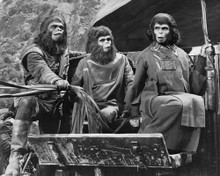 This is an image of Prints & Posters of Planet of the Apes 105773