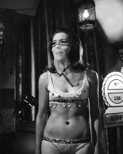 This is an image of Prints & Posters of Diana Rigg 105764