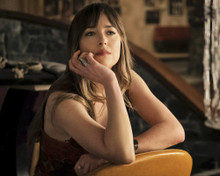 This is an image of Prints & Posters of Dakota Johnson 203215
