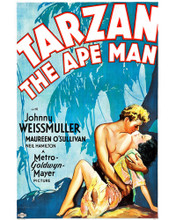 This is an image of Prints & Posters of Tarzan the Apeman 203203