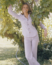 This is an image of Prints & Posters of Lindsay Wagner 203362