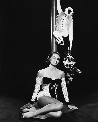 This is an image of Prints & Posters of Cyd Charisse 106064
